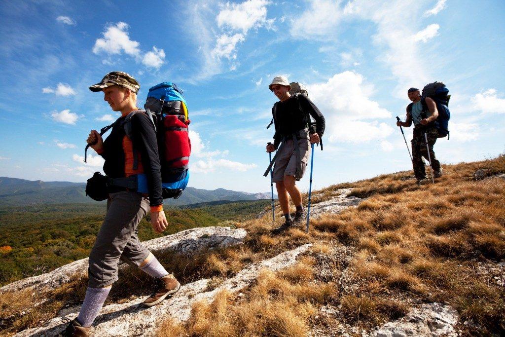 Турбизнес: корпоративные поездки и туристические группы