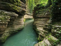 Райский уголок — Абхазия